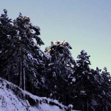 la nieve y su bella forma de decorar